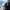 """""""Büyükşehir Belediyesi 17 bin metrekarelik Rehabilitasyon Merkezi ile sokakta yaşayan canlılara yuva olacak"""""""